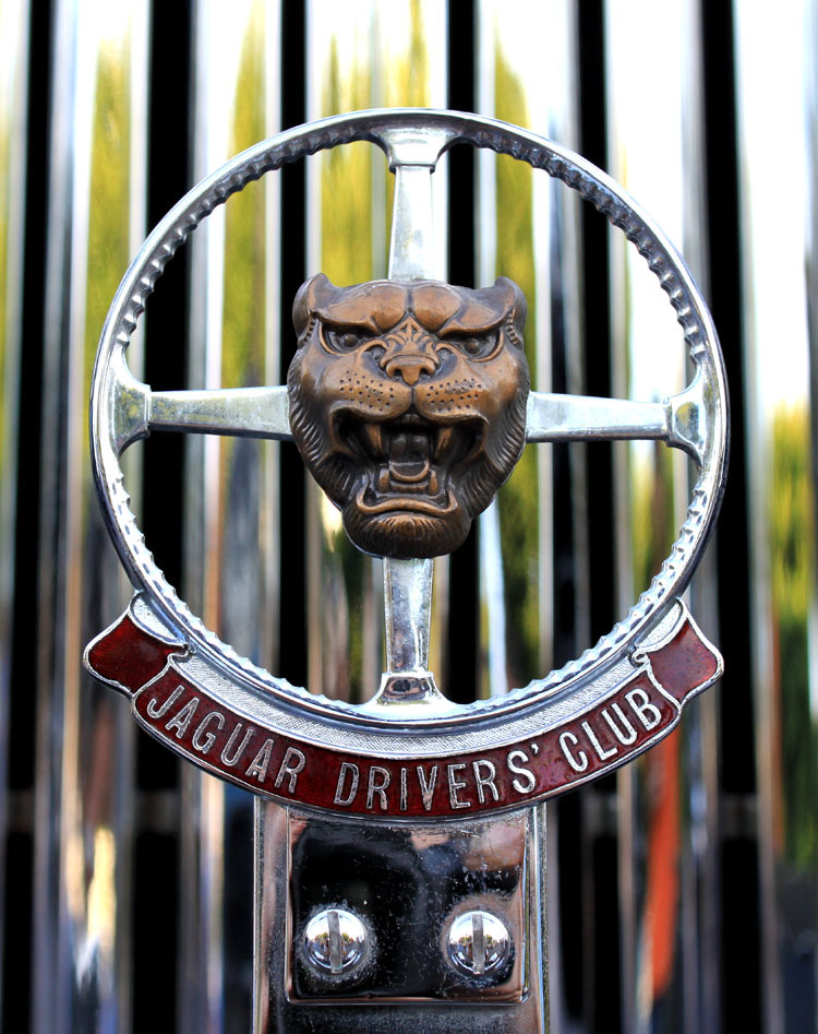 Jaguar Owners Club Emblem