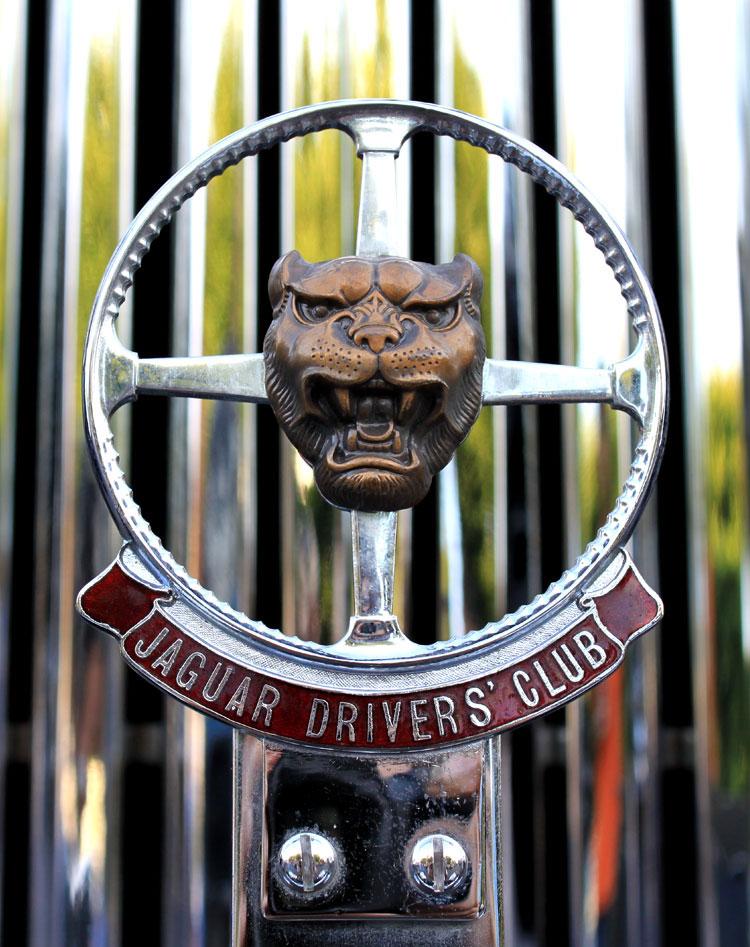 Jaguar Owners Club Emblem